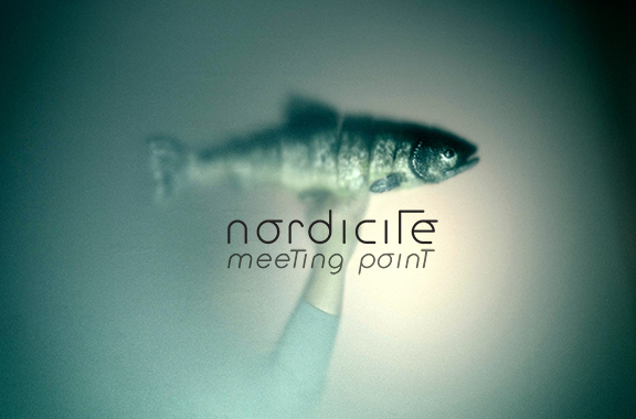 Nordicité/Meeting point 2018